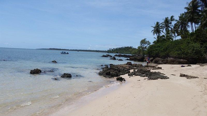 Morere Jungle Lodge,entre o jungle e uma das praias mais bonitas do Brasil, holiday rental in Barra Grande