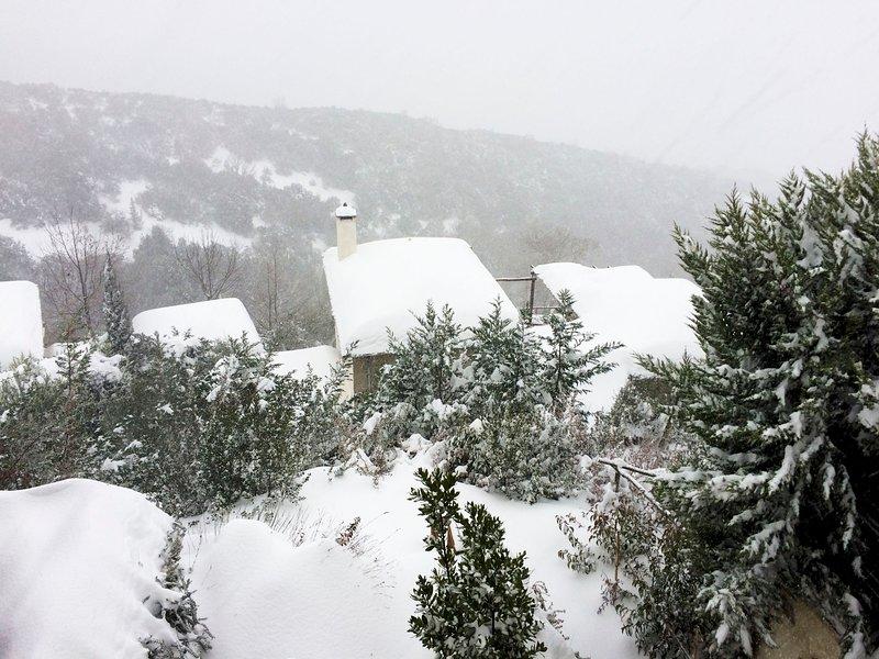 Snow looks so good on Pelion Homes