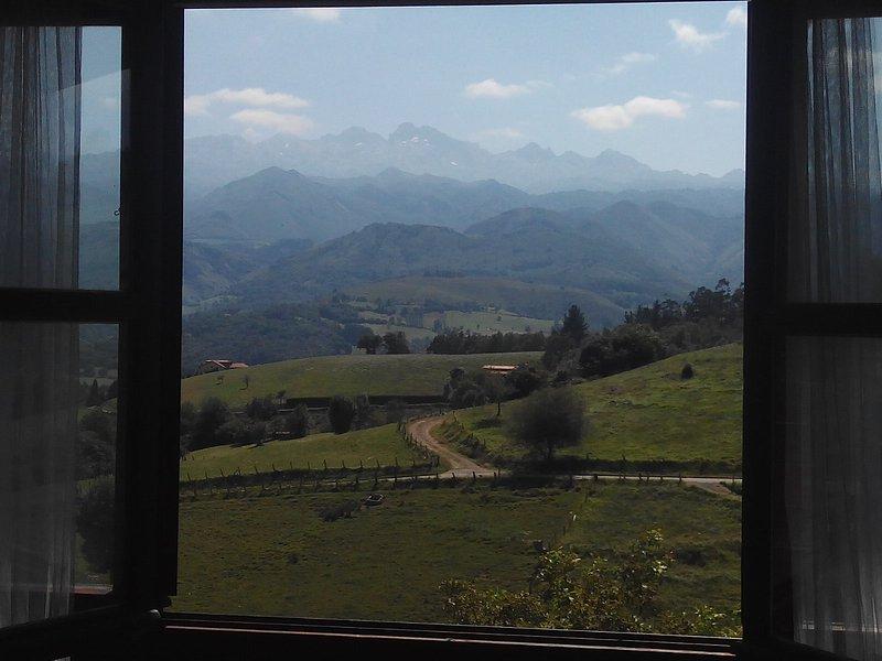 Dúplex con jardín privado y vistas a Picos de Europa, holiday rental in Corao