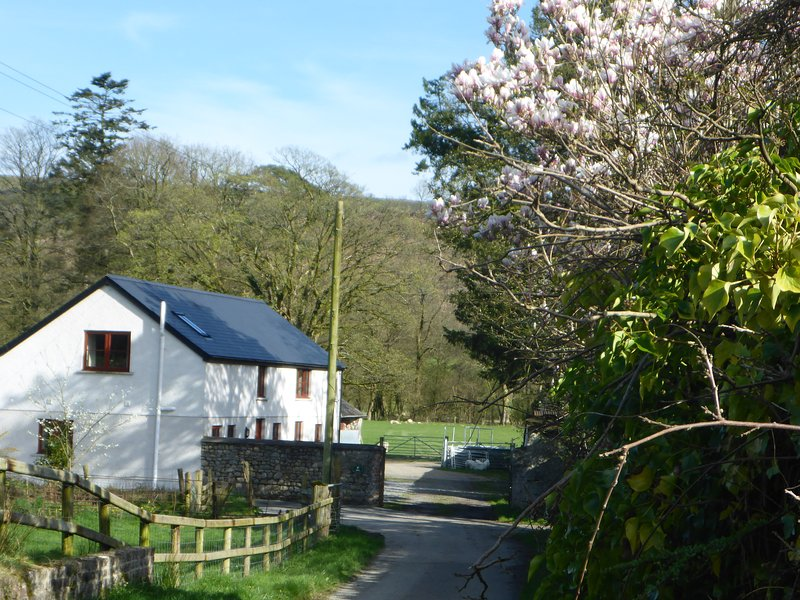 Kestrel farmhouse with hot tub available*, vacation rental in Llanwrtyd Wells