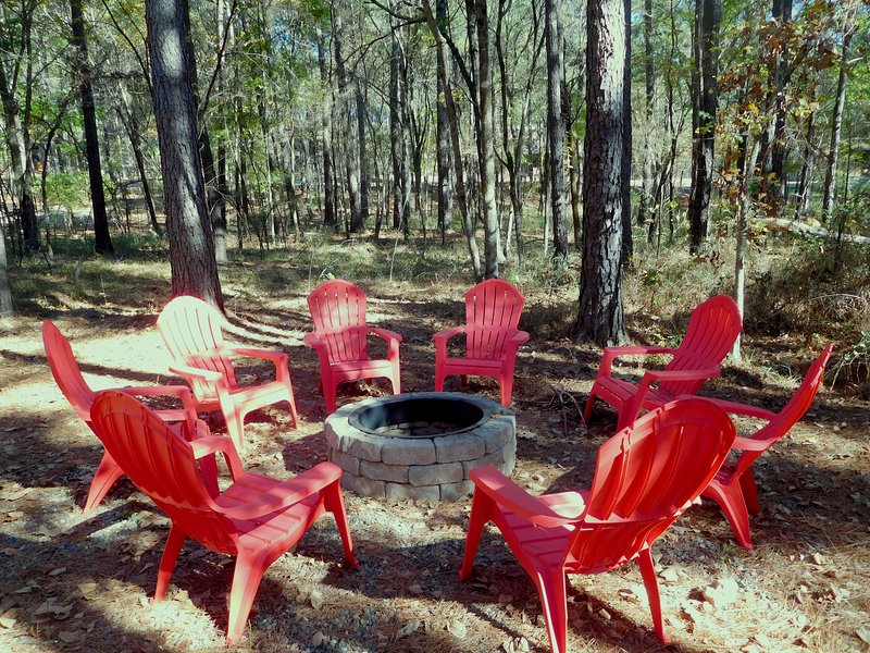 Chair,Furniture,Bench,Forest,Land