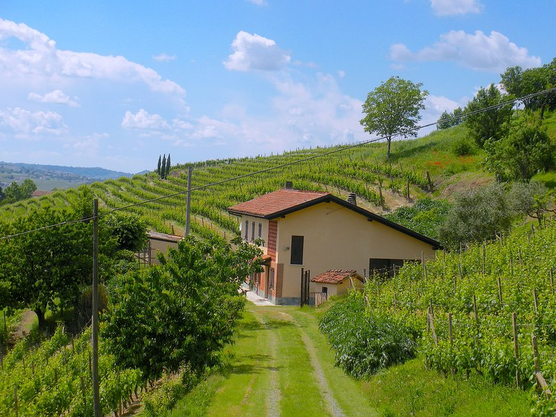 FARMHOUSE IN THE MIDDLE OF THE VINEYARDS IN NIZZA MONFERRATO, Ferienwohnung in Mombaruzzo