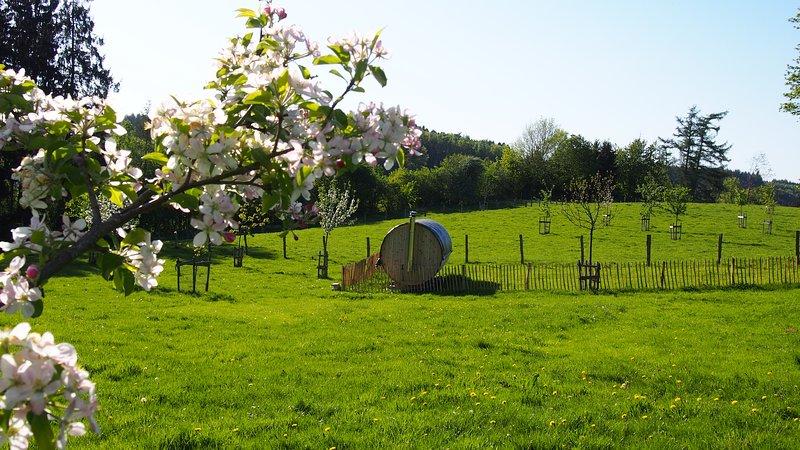 BIGARREAU, gezellig huis met haard en sauna, Les Vergers de Thimont Ardennature, location de vacances à Ortho