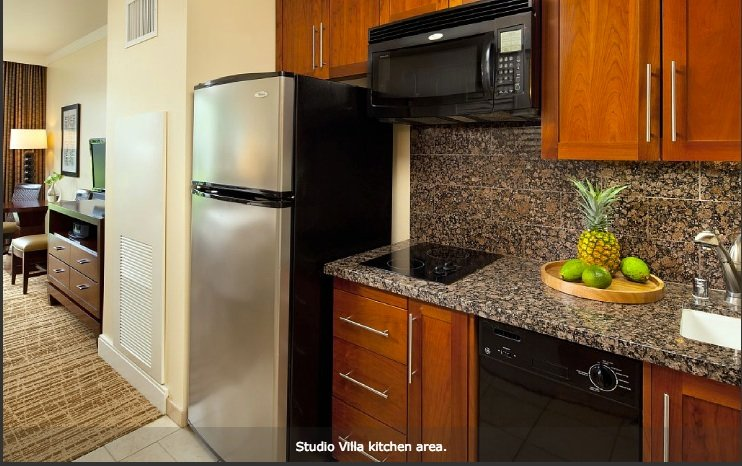 Fully appointed kitchen with stove, dishwasher and icemaking fridge.