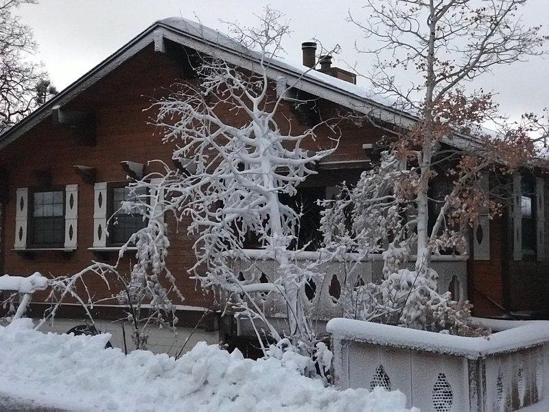 La neige de Thanksgiving 2018 a transformé le pavillon de la Réunion en un paradis hivernal. Si serein et paisible!