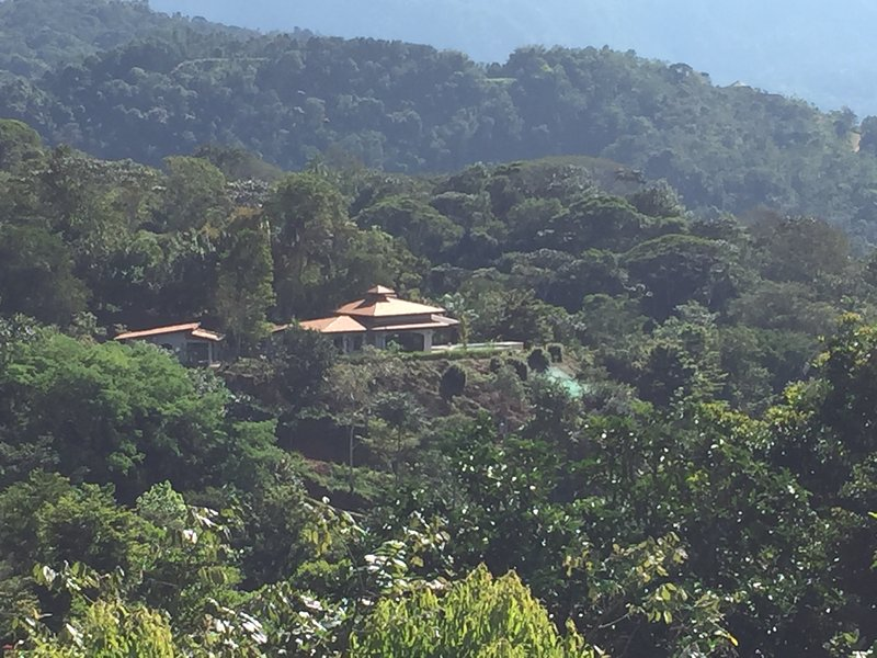 Romantic luxurious Costa Rica home to rent, Ferienwohnung in San Gerardo