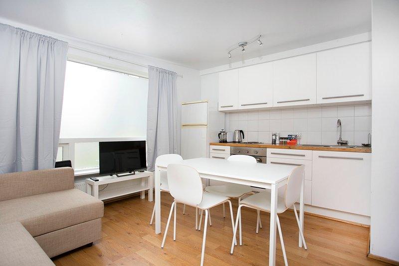Cosy Studo Apartment, aluguéis de temporada em Reykjavik