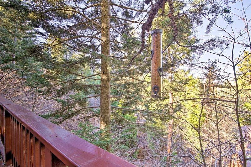 Es erwartet Sie ein ruhiger Rückzugsort am Lake Arrowhead. Buchen Sie noch heute!