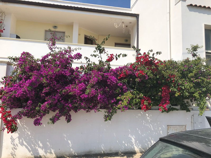Spacious house with garden & Wifi, holiday rental in Squinzano