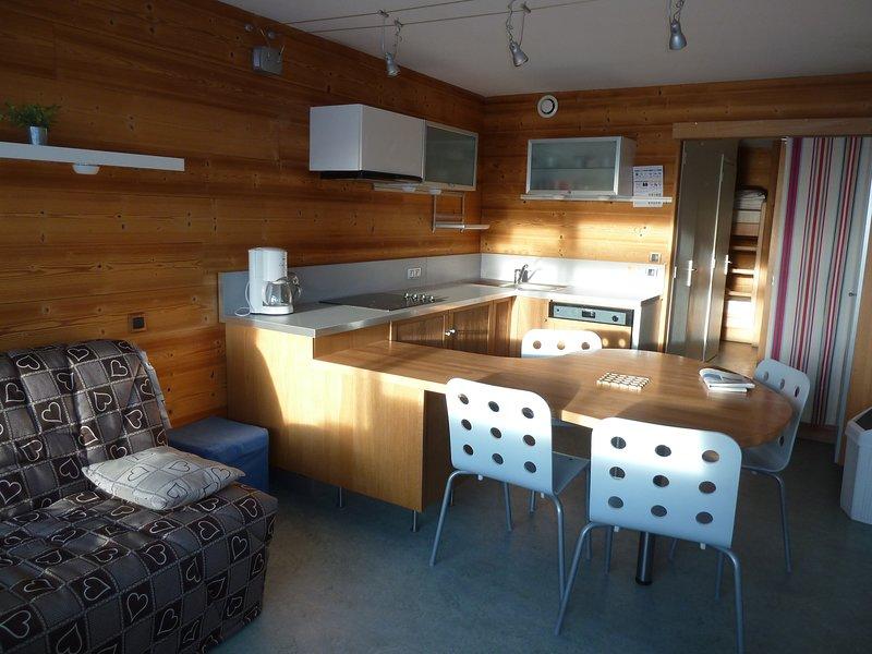 Studio 4 personnes 31 m2 rénové, bien situé proche parking couvert gratuit, location de vacances à Orcières