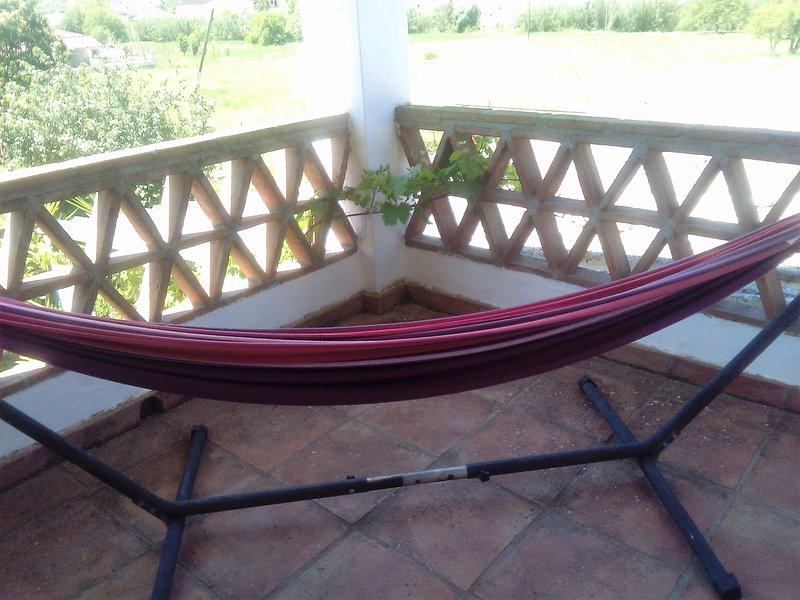 Siesta time in the hammock!
