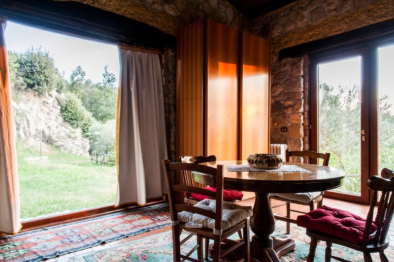 Villa de' Luccheri - Suite Dafne, holiday rental in Castelvenere