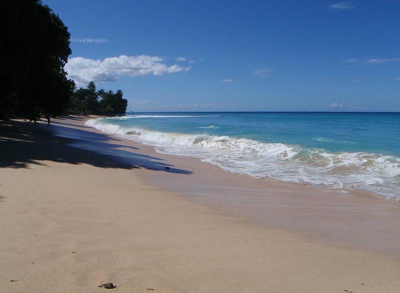 Gibbs Beach (2)