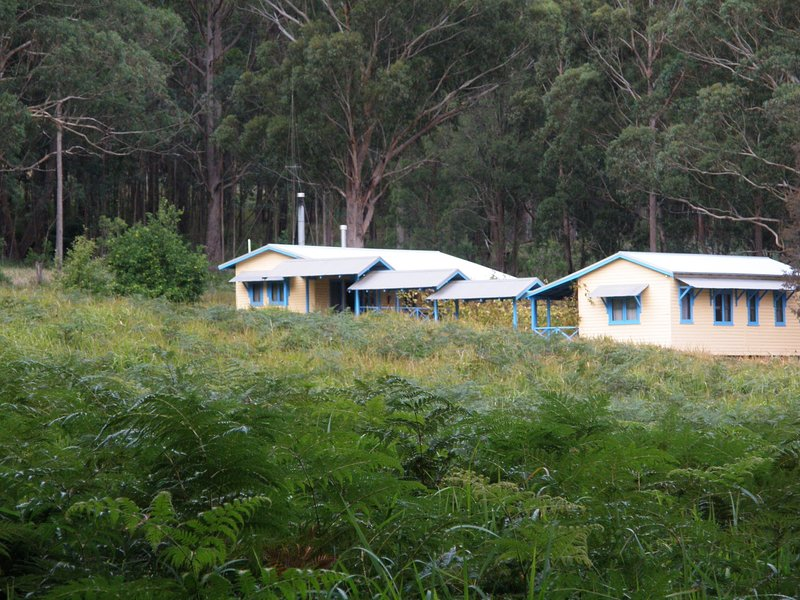Callicoma Hill Eco-cabin set in the forest