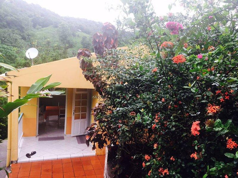 Nice house with terrace, location de vacances à Saint-Esprit