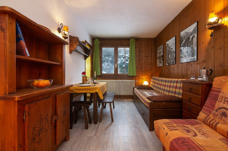 Hautes Aiguilles 8B, vacation rental in Chamonix