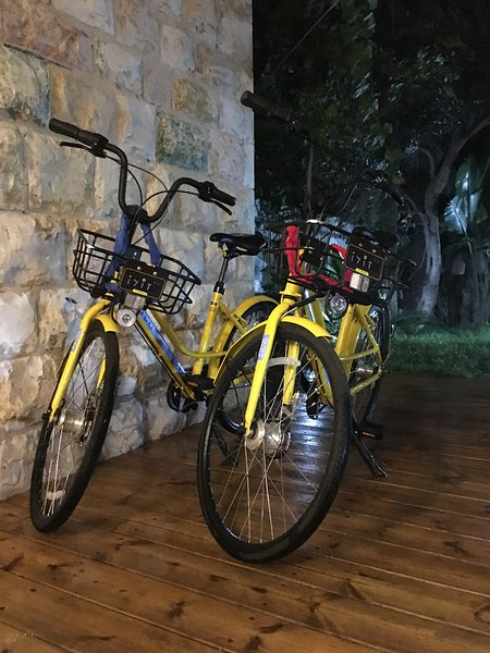 Pair of bicycles we offer our guests
