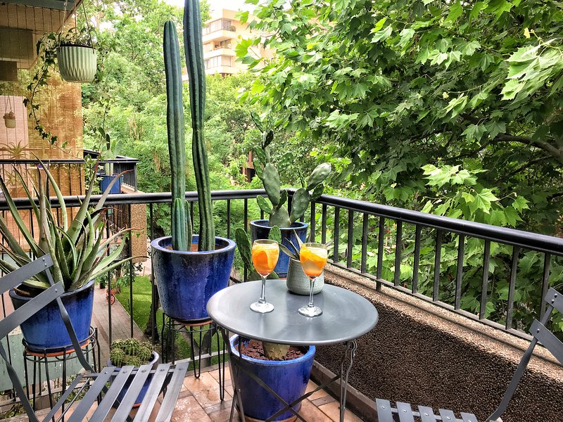 Bright NEW studio in the heart Providencia by the river/costanera/metro, holiday rental in Santiago