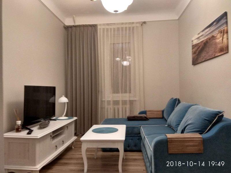 'Birken'-Apartment im Zentrum, location de vacances à Klaipeda