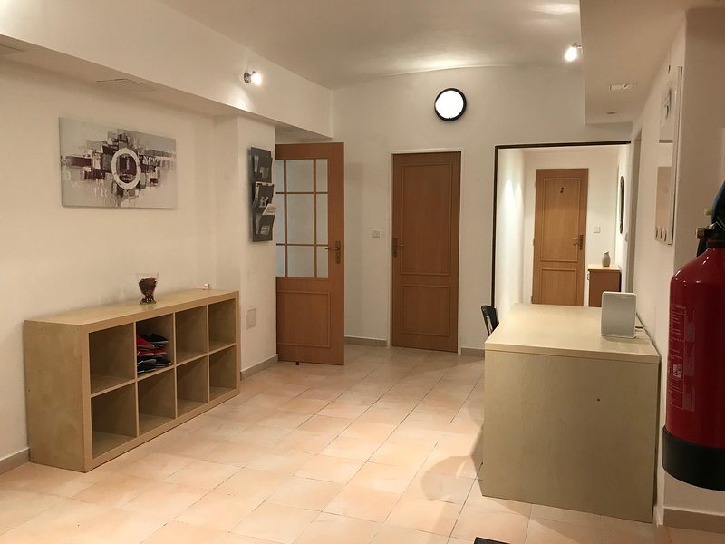 Group party apartment, holiday rental in Velke Popovice