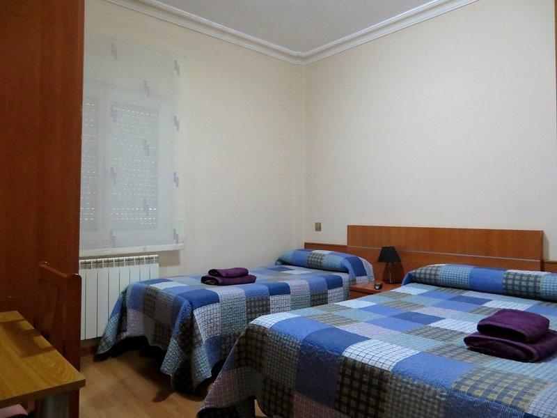 MENENDEZ PELAYO, holiday rental in Logrono