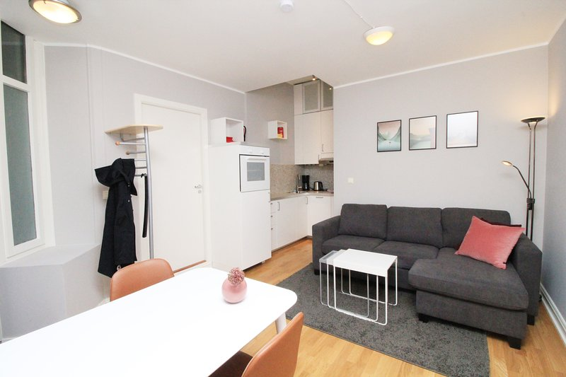 SKI21 - City center, 2BD/BA, 3 min walk from train station, holiday rental in Lillestrom
