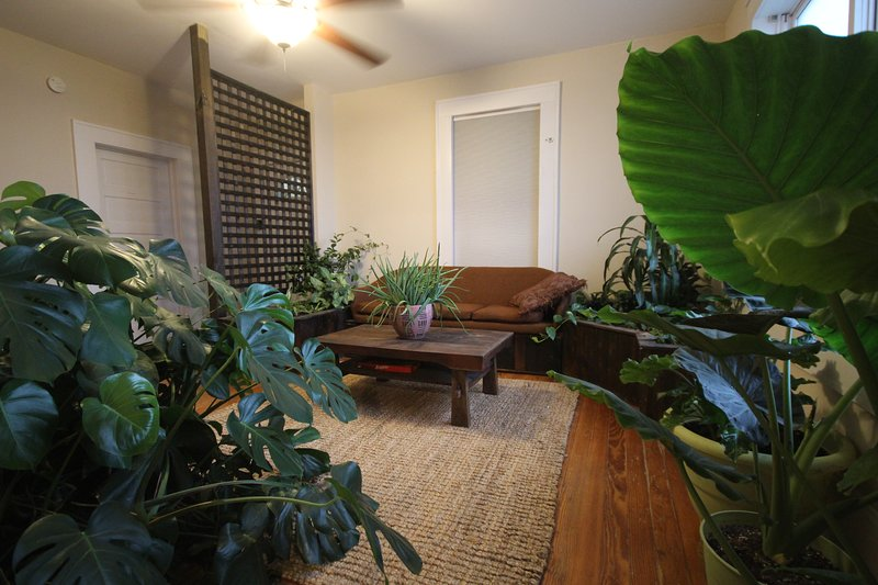 Beautiful Bungalow Lots of Plants Near Downtown!, holiday rental in Woodfin