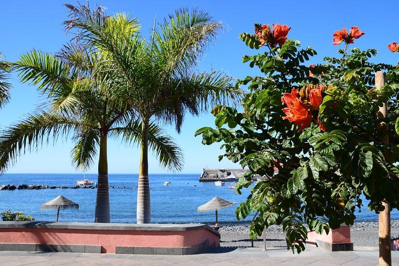 Balcón del Mar, holiday rental in Guia de Isora