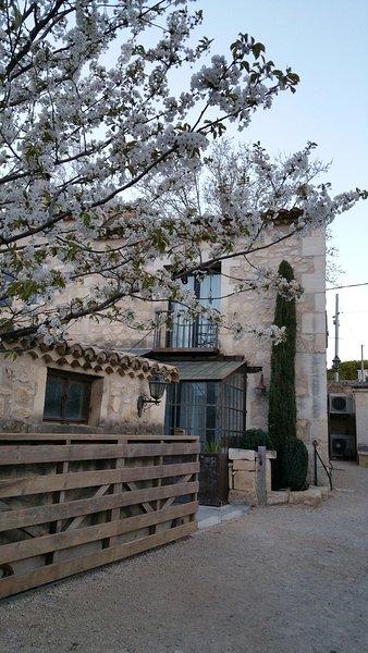 MAS DU FORGERON, Agréable Loft de 60m2, Mas Provençal rénové du 18-19ème siècle, casa vacanza a Bouches-du-Rhone