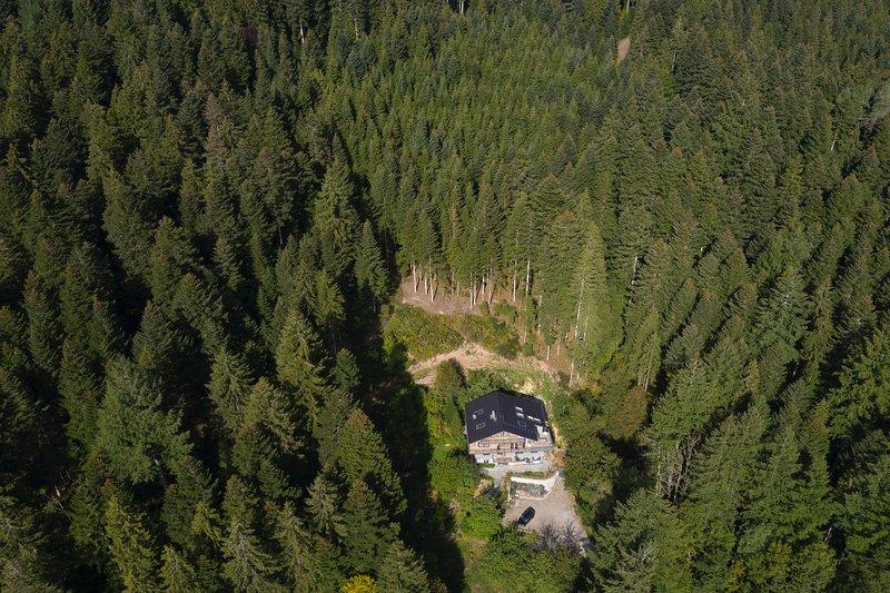 Lage: mitten im Wald an einem Südhang, trotzdem nur 1,1 km zu Einkaufsmöglichkeiten