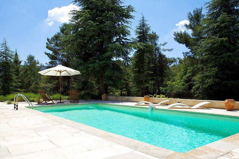 Lacoste Villa Sleeps 6 - 5706645, holiday rental in Lacoste