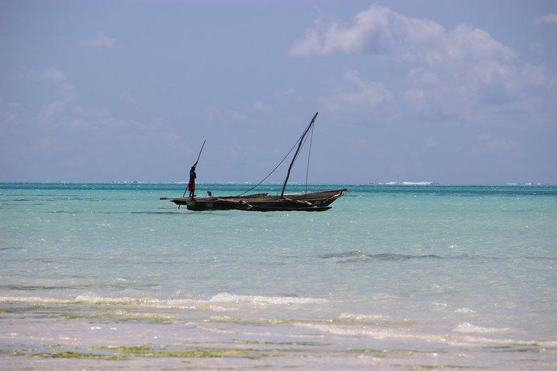 Playa Michamvi Pingwe