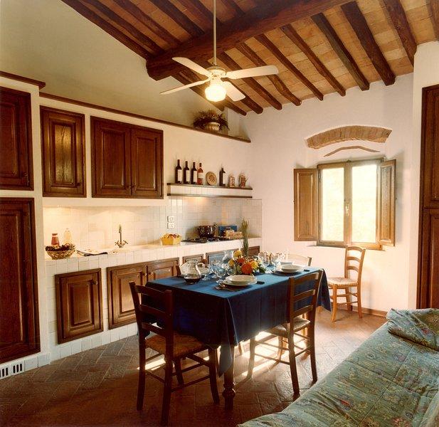 VILLA PANCONESI 'Colombaia', holiday rental in Trecento
