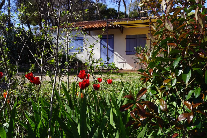 'Le cabanon'- Gîte de charme en Provence - Calme, confort, intimité, vacation rental in Marignane