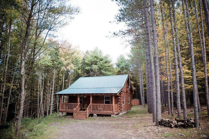 Secluded New Built Log Cabin! Near Cooperstown, aluguéis de temporada em East Meredith