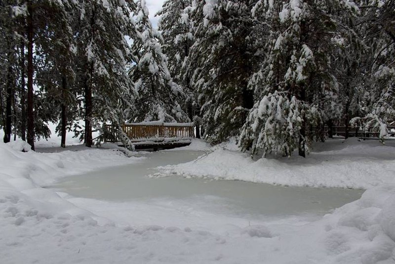Lodge has small man-made landscaped pond on site, just 3' deep (frozen in winter.)