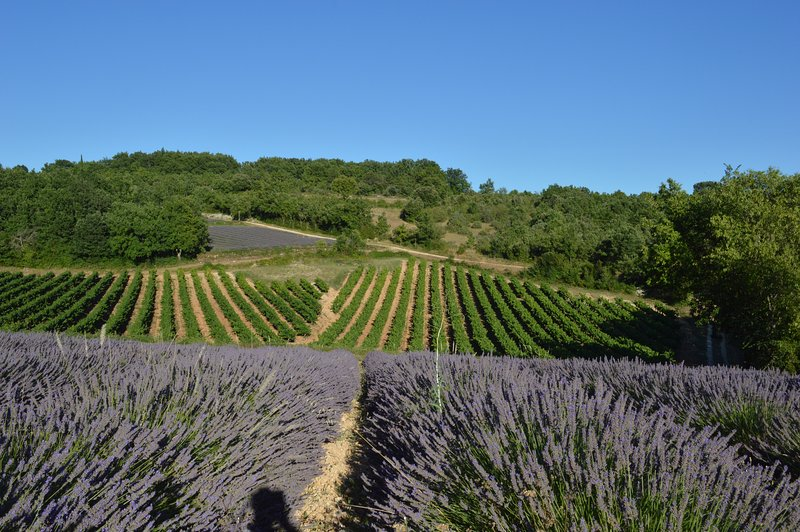 the surroundings of Clos des Taulelles