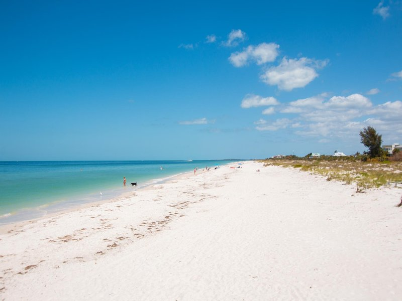 We invite you to walk the white sands of Sand Key Beach.