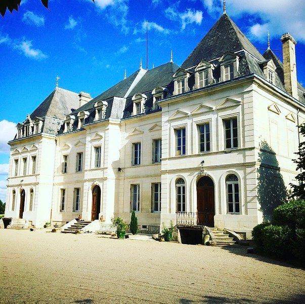 Château de Clérac, holiday rental in Saint Martin de Coux
