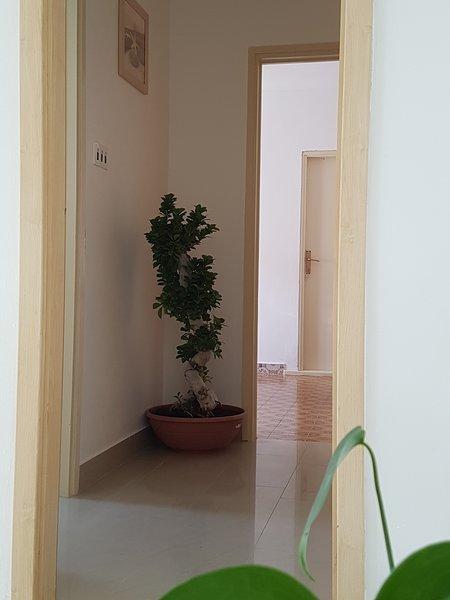 Apartments Kegalj, holiday rental in Podstrana