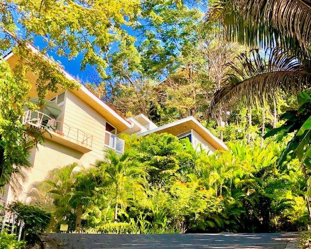 Benvenuti a La Perla, immerso nella giungla a soli 3 minuti a piedi dalla spiaggia, negozi e ristoranti