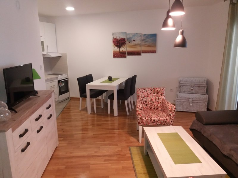 Apartment George ideal for family, vacation rental in Novi Sad