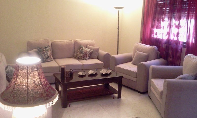 Amazing furnished new 3Br apartment in Sanayeh near Hamra, holiday rental in Beirut