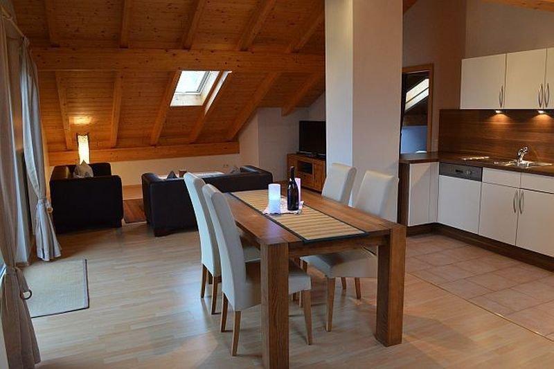 Birkeneck Luxury Castle Views, holiday rental in Dietringen
