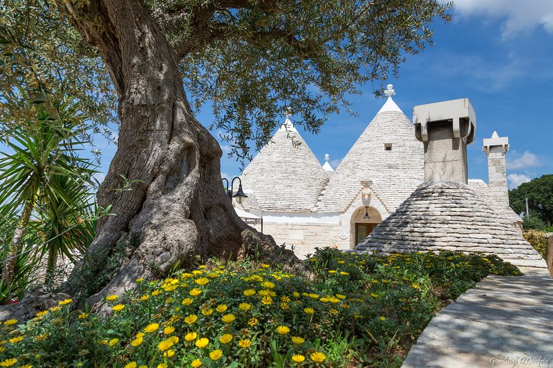 Relax and leisure at Trullo Ulivo, vacation rental in Locorotondo
