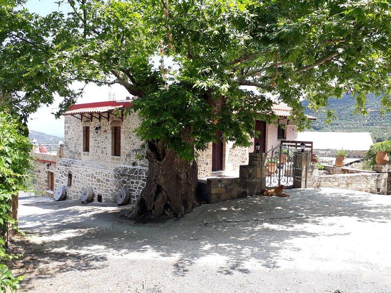 Traditional house koukounara, holiday rental in Kakopetros