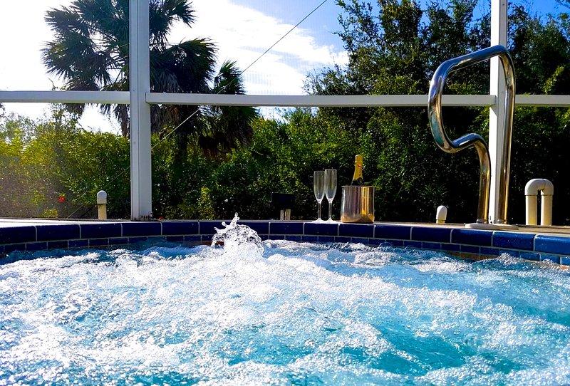 A Great Home! 4/5 beds, 4 baths, pool, spa. WiFi, bikes, BBQ GOLF,shops,BEACHES, vacation rental in El Jobean