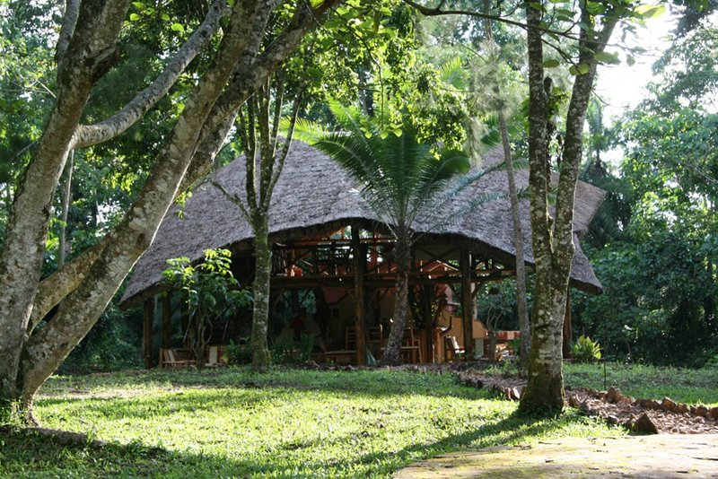 The Kibale Forest Camp will offer you an unforgetable experience, vacation rental in Kibale National Park