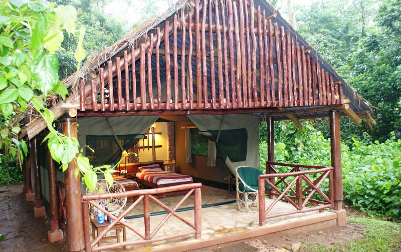 Stay here and experience the forest like never before, vacation rental in Kibale National Park