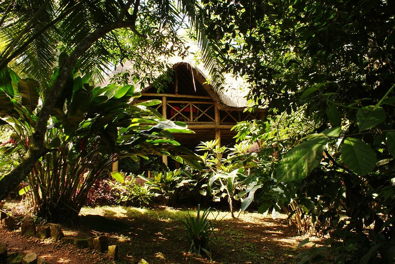Kibale Forest Camp a very good choice for a wonderful vacational experience, vacation rental in Kibale National Park